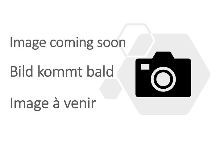 Single adjustable step with handrails